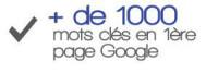 Plus de 1000 mots clés en première page google